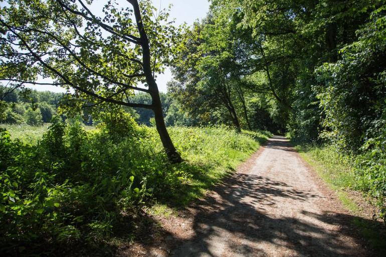 Naturcent – Fortschritte für die Natur messbar erhöhen