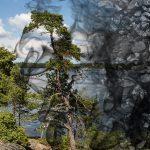 Klimaschutz: Bürgerschaft verabschiedet Kohleausstiegsgesetz