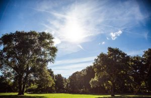 Wasserstofferzeugung in Moorburg: Ein wichtiges Signal für die Energiewende